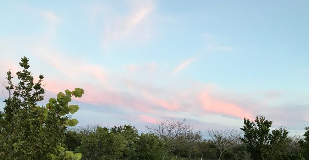 Pink clouds over Ft Zach